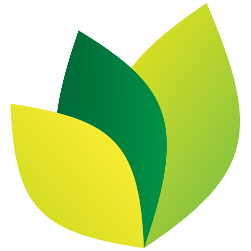 Personal Money Network Logo