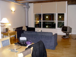 A furnished apartment living room with wood flooring.